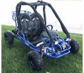 CYCLONE Gator GK 2  110cc  Go Kart.  All new for 2019,  Padded roll bars, coil over front shocks