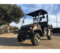 TrailMaster Taurus 200 Utility Hybrid with H/L .  Best Golf Cart Styling UTV Ride and Suspension. Dual Range Transmission