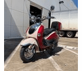 **FREE SHIPPING** 150cc Trailmaster Sorrento .  Great Retro Euro Style. Ships Fully Assembled One year warranty.
