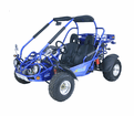 **FREE SHIPPING** TRAILMASTER 300XRX-E (EFI) water cooled. - Automatic CVT - Shaft Drive -