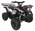 In Stock t Kymoto Mountopz RX4 110cc Mid Size Utility Rancher Youth Quad. ATV J012 New colors  mid size,  parental controls of the beginner models.