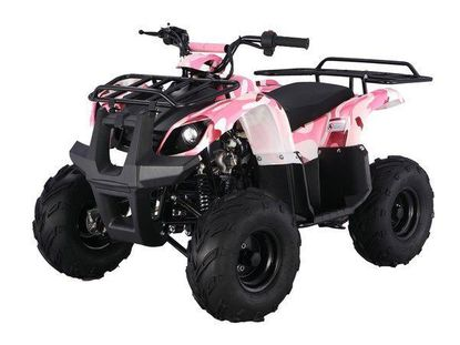 """Jet Moto Utility/Rancher 3125R 110 MID SIZE FRAME ATV """"Now Calif Legal"""" Front and Rear Racks AT013"""