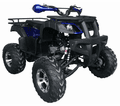 Kymoto Deluxe Sport 200 Elite - Full Size Adult Model - Larger Engine - Fully Automatic -
