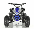Regency Ultra Wide ATV 125 R9
