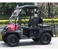 Taurus 200G Gas Golf Cart/UTV Side by Side 4 Seat Model  All new High/Low Transmission -