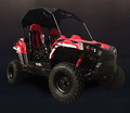 Trailmaster Challenger 200  Extended Youth/Adult UTV