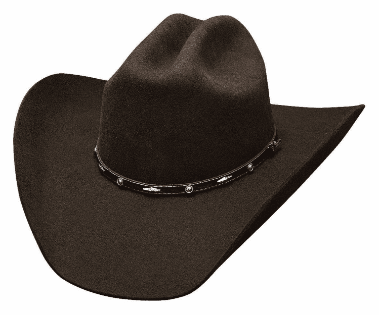 Bullhide Added Money 7X Hat