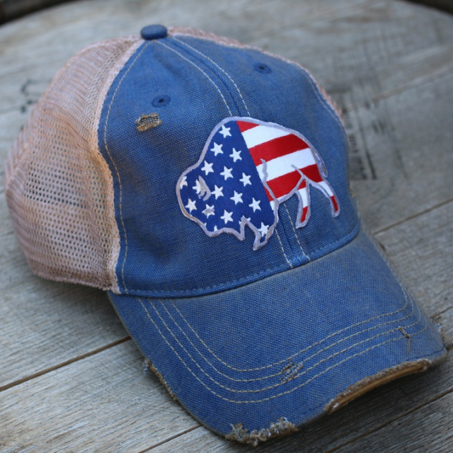 Free to Roam Distressed Cap Vintage Blue