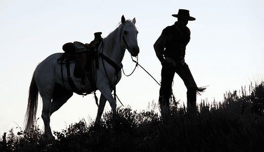 What  Cowboys and Cowgirls Shouldn't Do