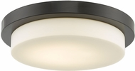 Abra 30016FM-BZ Step Contemporary Bronze LED 16  Overhead Lighting