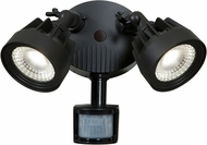 Access 20785LED-BL Guardian Modern Black LED Exterior Security Motion Light