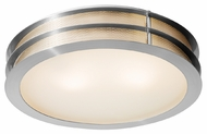 Access 50131 Iron Contemporary Flush Mount Ceiling Light - 16 inches