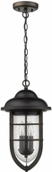 Acclaim Lighting 1716ORB Dylan Oil-Rubbed Bronze Outdoor Mini Hanging Lamp