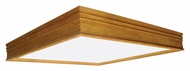 AFX Ceiling Light Fixtures