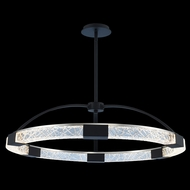 Allegri 034851-051-FR001 Athena Matte Black w/ Polished Nickel LED Pendant Lighting Fixture