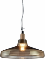 Arnsberg 304900100 Dover Contemporary Transparent Ceiling Light Pendant