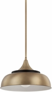Capital Lighting 325713BX Modern Brass and Onyx Drop Ceiling Lighting