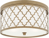 Capital Lighting 4549BG Ellis Brushed Gold Ceiling Light Fixture