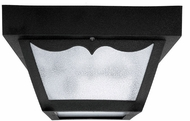Capital Lighting 9237BK Black Exterior Ceiling Lighting