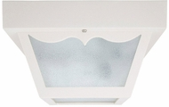 Capital Lighting 9237WH White Outdoor Ceiling Light