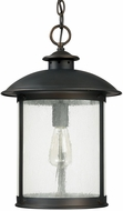 Capital Lighting 9564OB Dylan Old Bronze Outdoor Hanging Light