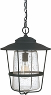Capital Lighting 9604BK Creekside Black Outdoor Pendant Lighting Fixture