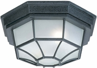 Capital Lighting 9800BK Black Exterior Ceiling Lighting