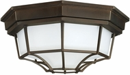 Capital Lighting 9800OB Old Bronze Exterior Overhead Lighting