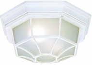 Capital Lighting 9800WH White Outdoor Ceiling Lighting Fixture