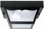 Capital Lighting 9937BK Black Outdoor Carport Flush Mount Lighting