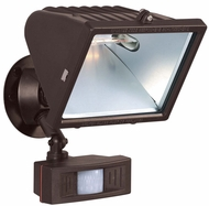 Contemporary Security Flood Lights
