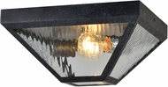 Crystorama GLA-9703-WT-BC Glacier Black Charcoal Exterior Ceiling Light Fixture