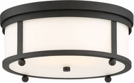 Crystorama SYL-2283-OP-BF Sylvan Black Forged Exterior Flush Mount Lighting Fixture