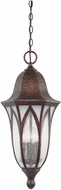 Designers Fountain 20634-BAC Berkshire Traditional Burnished Antique Copper Exterior Hanging Light Fixture