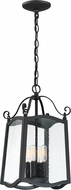 Designers Fountain 94794-BK Glenwood Traditional Black Outdoor Mini Pendant Hanging Light