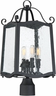 Designers Fountain 94796-BK Glenwood Traditional Black Exterior Lighting Post Light