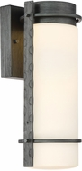 Designers Fountain LED34311-WI Aldridge Modern Weathered Iron LED Outdoor Wall Mounted Lamp