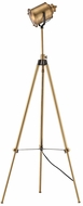 ELK Home D3223 North Gower Contemporary Aged Brass Floor Lamp Light