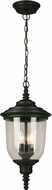 EGLO 202805A Pinedale Matte Black Outdoor Hanging Lamp