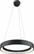 Elan 83455 Fornello Contemporary Sand Textured Black LED 24  Drop Lighting Fixture