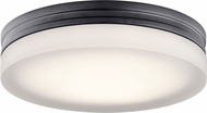 Elan 83804 Rylee Modern Bronze LED 11  Overhead Light Fixture