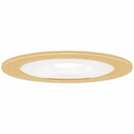 Elco EL1415G Contemporary Gold 4  Adjustable Shower Recessed Lighting Trim