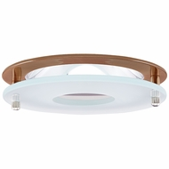 Elco EL1426CP Modern Copper 4 Reflector Recessed Lighting Trim With Suspended Frosted Glass