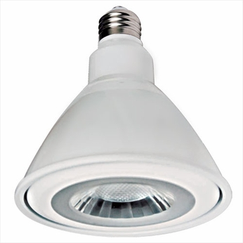 Elco PAR38FLD Recessed Lighting PAR38 LED Lamp