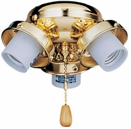 Emerson Ceiling Fans F330 F330 Three-Light Turtle Fitter