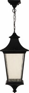 Craftmade Z1371-11-LED Argent II LED Midnight Exterior LED Pendant Light Fixture