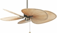 Fanimation Fans FP320AB1-220 Islander Antique Brass Ceiling Fan Assembly