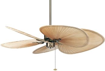 Fanimation FP320AB1 Islander Contemporary Antique Brass Home Ceiling Fan