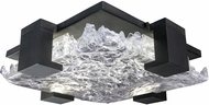 Fine Art Lamps 895440-11 Terra 895440-11 Black / Clear LED Indoor / Outdoor Ceiling Lighting