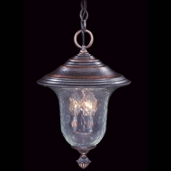 Framburg 8326 Carcassonne Traditional Outdoor 10.5  Hanging Pendant Lighting